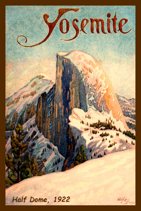 Yosemite 1920 Credit Card Cases